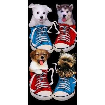 Toalha de Praia Veludo Bouton Happy Puppies 76 x 152 - Buettner 85c9096f3497a